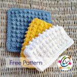 Featured Pattern: Cobble Scrubbie