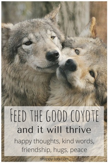 Feed the Good Coyote